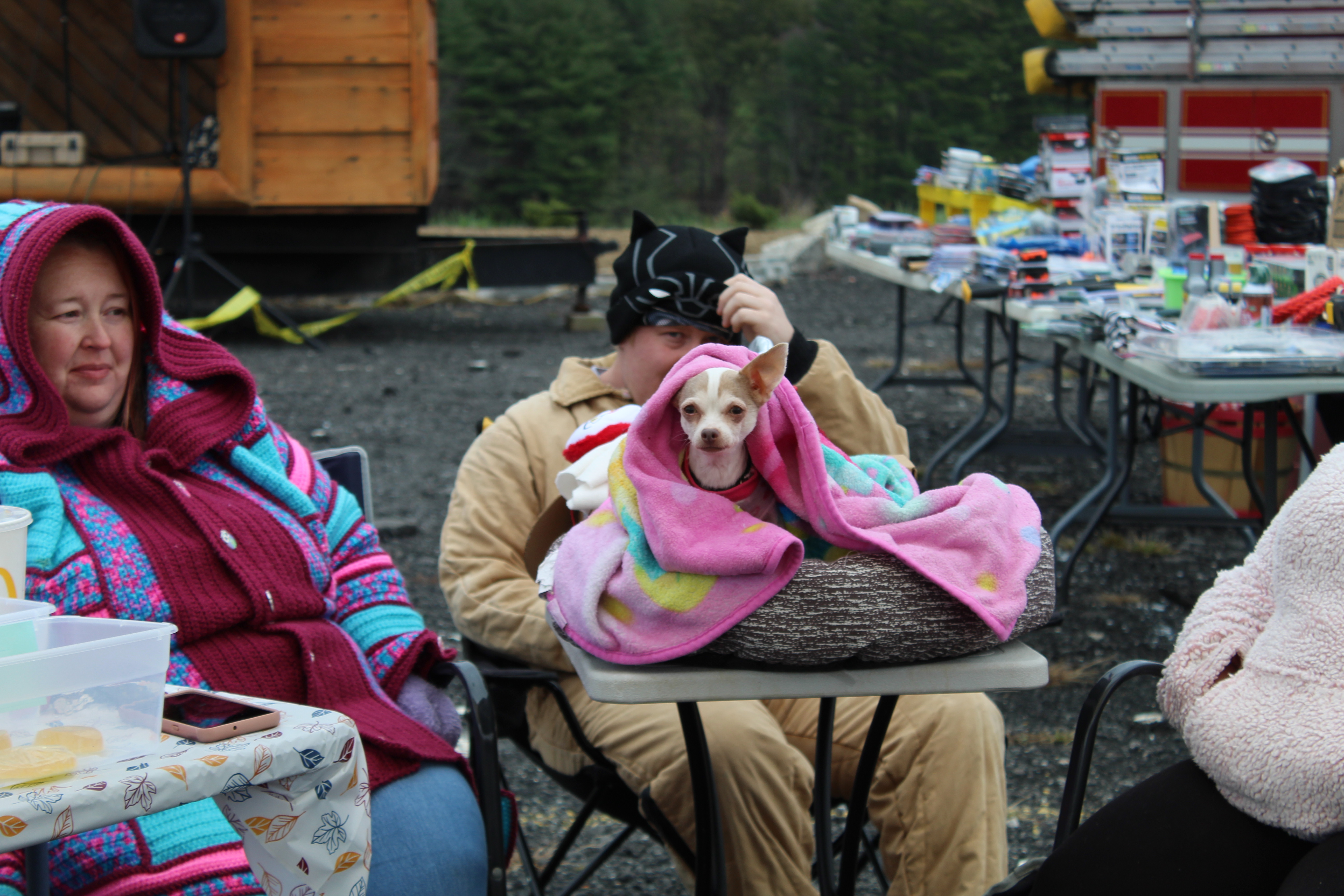 A vendor's dog snuggles up in a blanket at the Remember When Day festival on Oct. 31. The weather conditions were chilly and windy, but vendors stayed warm in coats and with heaters.(MNJ Photo/Juliana Walker)